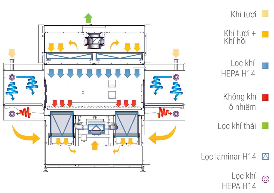 Luồng khí Laminar - Tủ an toàn sinh học cấp III