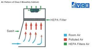 dòng khí trong tủ an toàn sinh học cấp 1
